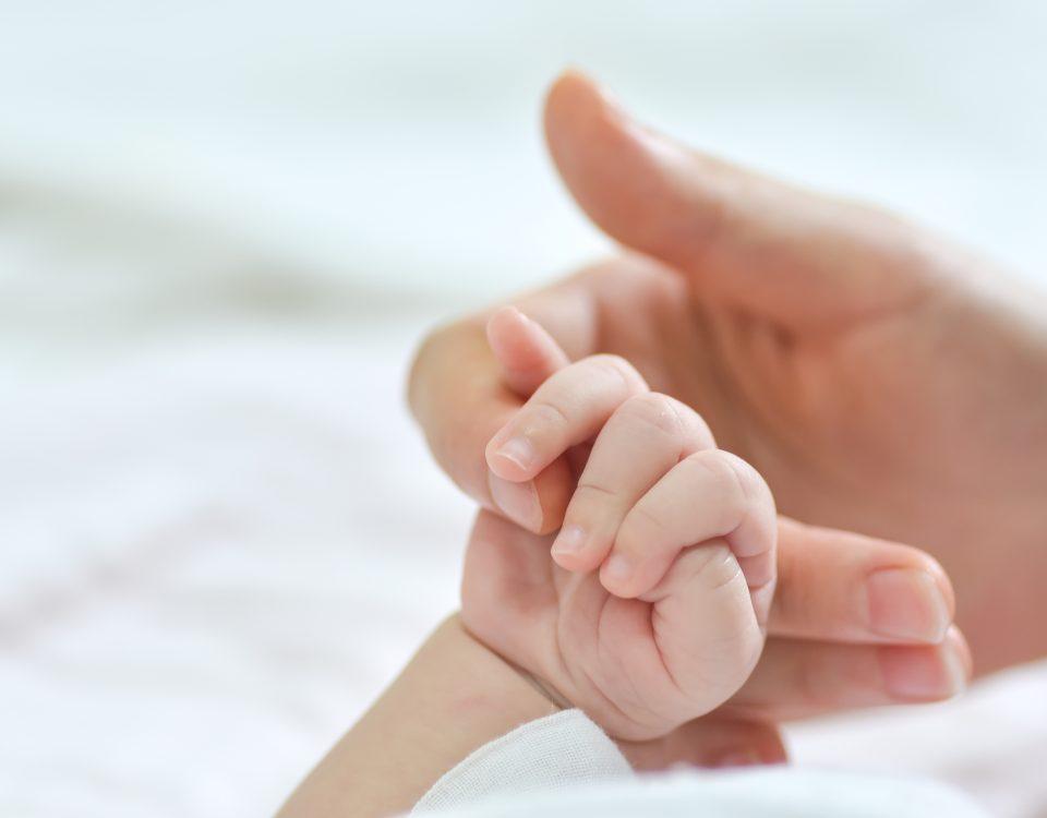 Mandat politique VS congé maternité : des jetons ou des rejetons ?